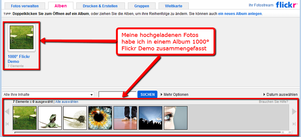 02.Mein_Flickr_album.png