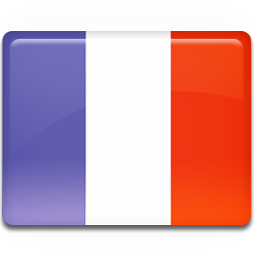 France-Flag-icon.png