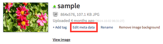 Edit_Metadata.png